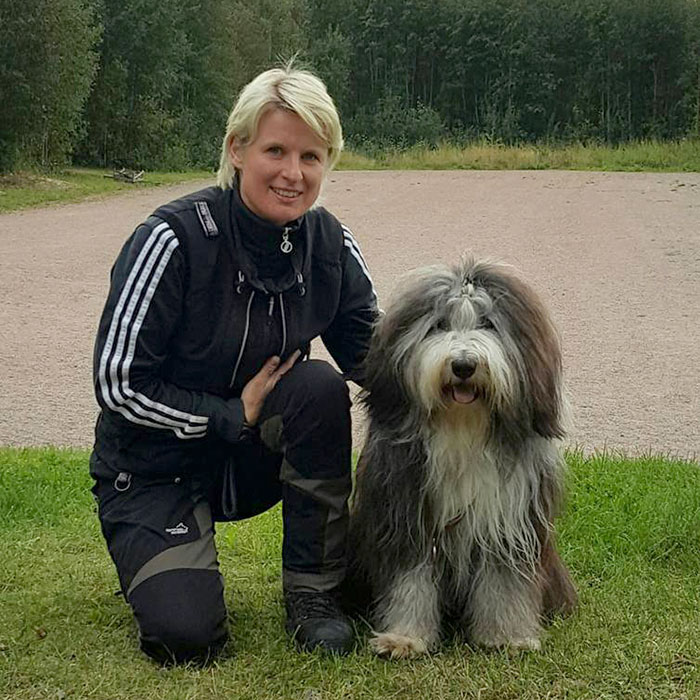 Hjalmar - bearded collie- tävlar appellklass spår